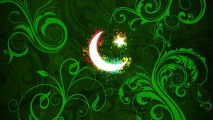 Pakistan Zindabad by wikkid-kid