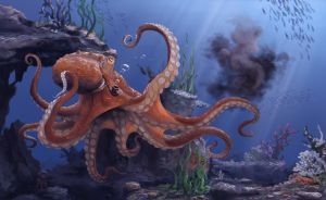 Octopus by Cannibalus