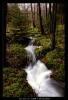 ems creek by donk00085