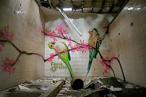 Water works Parrots by sazzelli