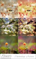 Action Flowers by ASHOOR