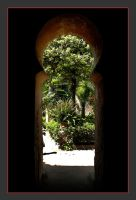 Exit of The Arab Baths In Palma by skarzynscy