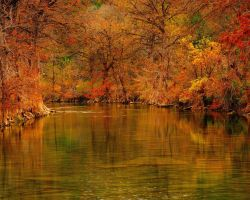 Autumn Along the Blanco by labba1