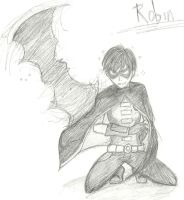 Robin - Young Justice by Mich1309
