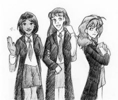 Gryffindor Girls by laerry