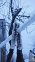 Frosty clothespin by wellgraphic