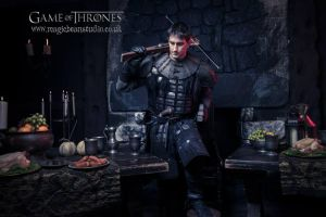 Brother of the Nights Watch by Leadmill
