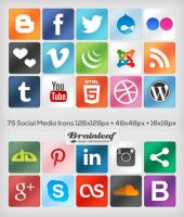 Classic Social Media Icons by Ransie3