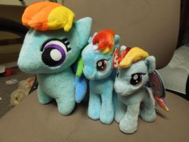 Rainbow Dash Heights by Tailji