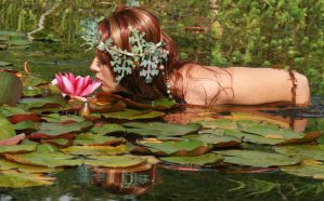 Water Lilies 57 by MarjoleinART-Stock