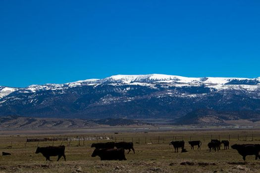 Horseshoe Mountain in April (2) by artisticimposter