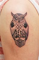 Owl by HIGHTRIP