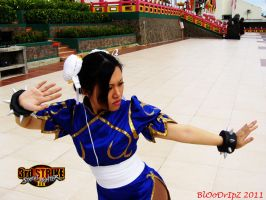 Chun Li Pose 11 by BlOoDrIpZ