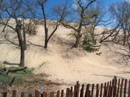 Dune Stock 1 by darchiel