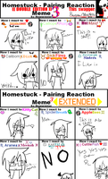MEME-Homestuck Pairing Reaction by xXMissNekoXx