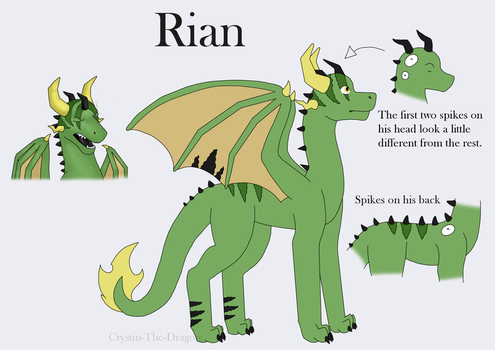 Rian reference by CrystalFossil