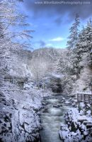 Winter on Ketchikan Creek by Muskeg