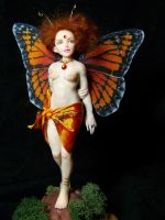 'Xylia' butterfly fairy by AmandaKathryn