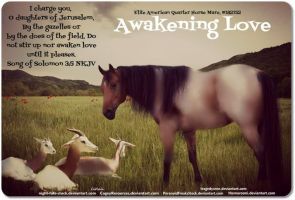 Awakening Love by JuneButterfly-stock
