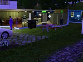 Sims 3 - Let's eat family picnic dinner together by Magic-Kristina-KW