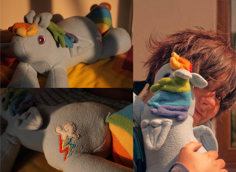 rainbow dash (now in plush form) by mhaladie