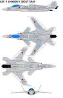 ASF-X Shinden II ghost gray by bagera3005