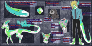 Schizophrenia ref sheet try out by TerinAngel
