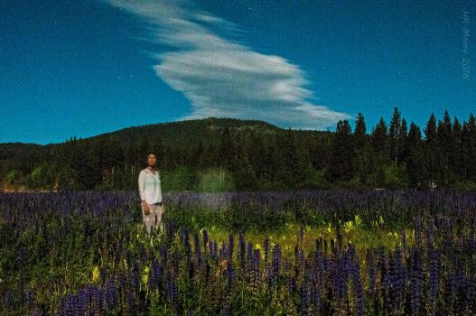Moonlit in the Lupine by mistakeablyme