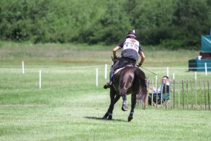 Cross Country Track Highspeed Galopp Backview 3 by LuDa-Stock
