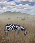Once Upon a Time in Kenya - 1 by BenHeine