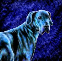 Blue dane by twistedcreaturesart