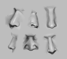 Noses Practice by mademanmadman