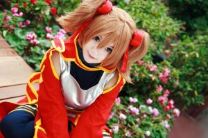 Sword Art Online - Silica by Xeno-Photography