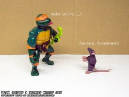 Mastersplinter by ninjatoespapercraft