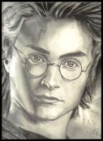 Harry Potter - Fearless Hero by Fring