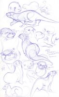HOW DO OTTERS WORK??? by pai-draws