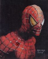 Spiderman 6-23-08 by Stephieeee13445