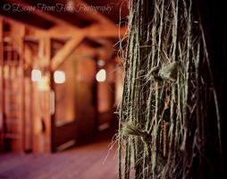 Through the Twine by jltrafton