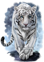 White Tiger by Kajenna
