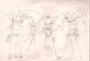 Sonic,Shadow,Silver,Sira by sira-the-hedgehog