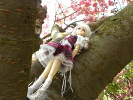Queen of the sakuratree by Lolita-La-Lapin