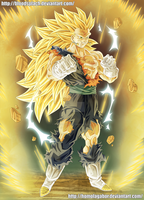 Vegetto SSJ3 by HomolaGabor