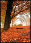 Under the red tree by mjagiellicz
