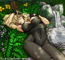 Canary Sleeping by Spartichi
