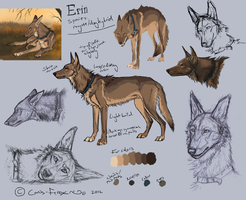 Coydog Ref (OUTDATED) by Canis-ferox