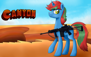 Canyon by NotEnoughApples