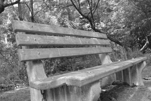 Bench by cookieface363