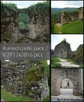 Ruined Castle pack 2 by Cat-in-the-Stock