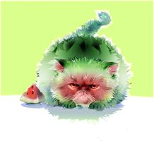 watermelon cat by LimKis