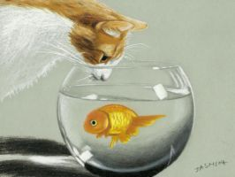 Cat with aquarium fish in colored pencil by JasminaSusak